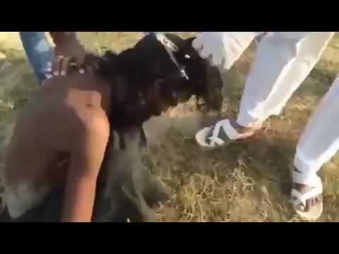 Evsiz adamın saçından çıkanlar dehsete düşürdü