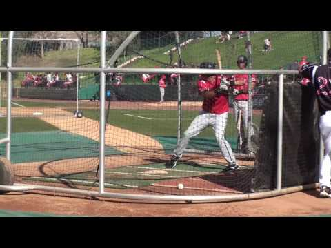 Lonnie Chisenhall of the Carolina League All-Stars (HD)