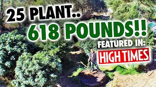25 Plant '618'lb. Mendo Dope Marijuana Garden featured in High Times Magazine.