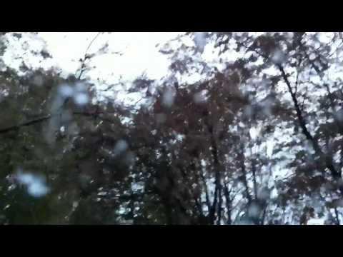 Первый снег в Октябре