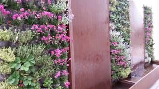 Fuente de acero corten y jardin vertical