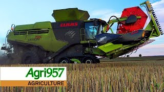 "XXL HARVEST: 2x LEXION ""795"" MONSTER ENERGY LIMITED EDITION + 1x 770 