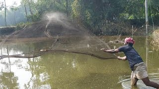 Real Net Fishing | Fish Catching With Cast Net | Fishing in the village