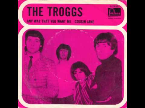 The Troggs Any Way That You Want Me
