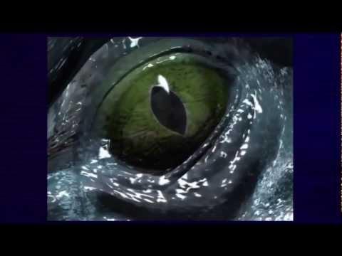Sonic Adventure DX Opening cutscene HD (Xbox 360)