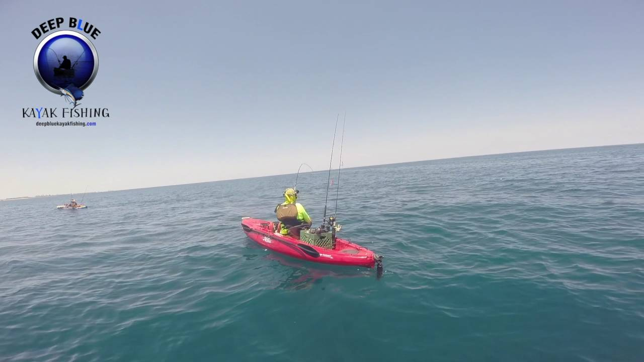 Jumbo Blackfin Tuna   Deep Blue Fishing Charter
