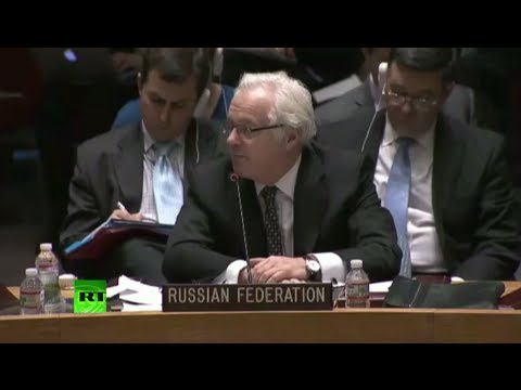 'Extreme radicals among those who seized power in Ukraine' - Russia's UN envoy (FULL SPEECH)