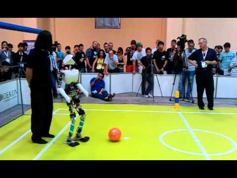 RoboCup 2011: Adult Size Final