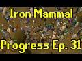 Oldschool Runescape - 2007 Iron Man Progress Ep. 31 | Iron Mammal
