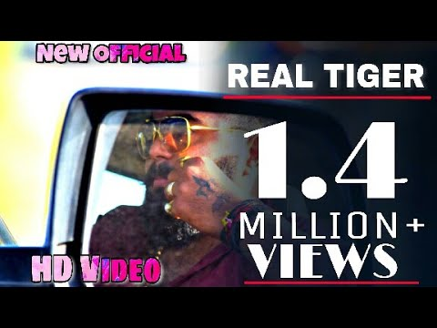 The Real Tiger 7    Rabari superstar  2    Full Video  HD. thumbnail