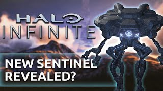 Halo Infinite NEWS - NEW Infinite Sentinels, Species and LEVEL possibly revealed!