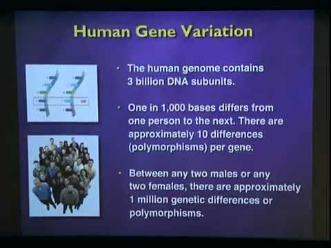 Science 101 for Parents - Or 20 Years of the Genetic Revolution in One Hour
