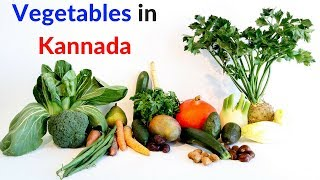 Vegetables in Kannada - Learn Kannada