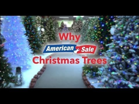 Why Buy Your Tree From American Sale?