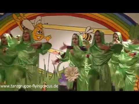 "Metamorphose - Showtanzgruppe ""The Flying Circus""- 2014"