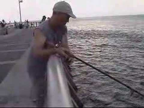 jimmy snook fishing sebastian inlet florida