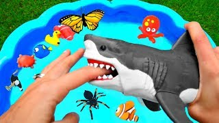 Wild Zoo Animals Toys Baby Mom Learn Animals Names Education Toys for Kids Video