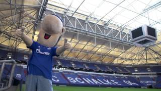 Kennst Du den Mythos...? - ab 11. September 2015 in der Veltins-Arena