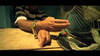 Jaffa - jaffa Telugu movie HD trailer (Brahmanandam-Vennela Kishore)
