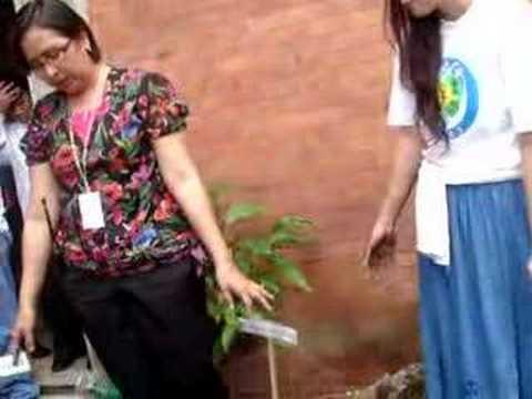 Chin-Chin Gutierrez Tree Planting in Tayuman Part 3