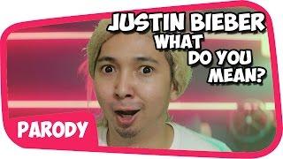 Justin Bieber - What Do You Mean PARODI !!