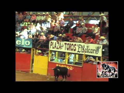 AGARRON JARIPEYERO!! EN EL RELICARIO DE MORELIA 2/06/13
