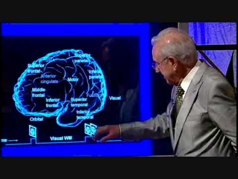 Los Mecanismos de la Memoria
