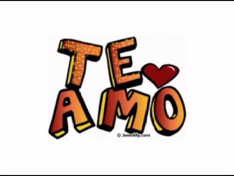 Pancho barraza te amo y te lo digo lyrics for En verdad te amo