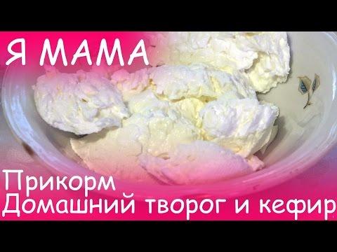 Я MAMA - Прикорм, домашний творог и кефир для малыша