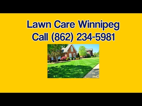 Best Lawn Care Winnipeg - Winnipeg Grass Cutting Weed Control And Lawn Maintanence Services
