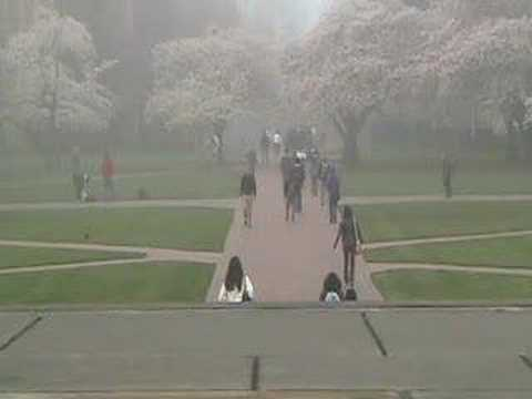 Tracy Grammer And Dave Carter - Gentle Soldier Of My Soul