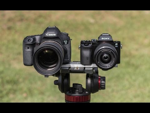 Sony A7s vs 5D Mark III - The 5D has finally met its match