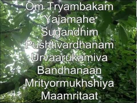 Shiva-mahamrityunjaya Mantra-om Tryambakam Yajamahe...108x video