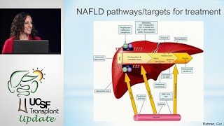 Fatty Liver Disease: New Therapeutics