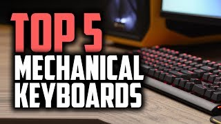 Best Budget Mechanical Keyboards in 2018 - Gaming On A Budget