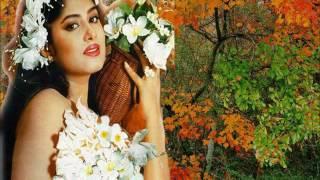 Sei mayeti amake valobashe kina Cover by Zahid Hasan