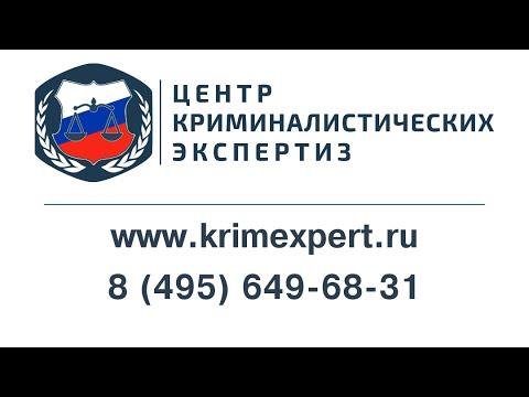 Искусствоведческая экспертиза. РБК ТВ