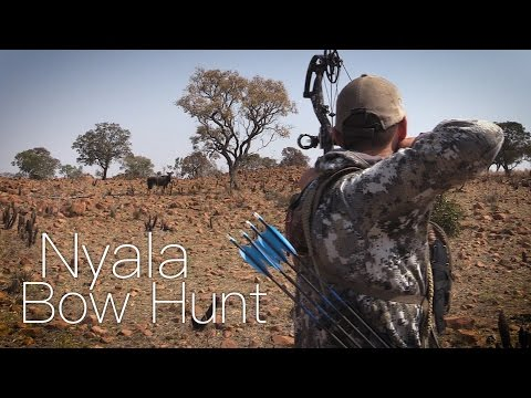 Bowhunting Nyala in South Africa