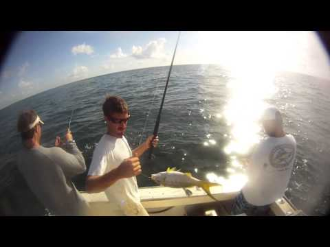 Yellowtail Snapper Fishing Marathon, FL