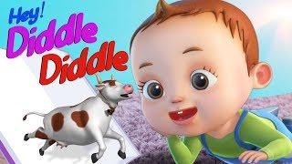 Hey Diddle Diddle Nursery Rhyme | Baby Ronnie Songs | Videogyan 3D Rhymes | Baby Songs