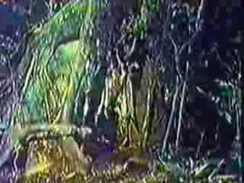 Hermeto Pascoal - More Música da Lagoa