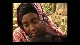 Ethiopian Movie Balager 2016 Full Movie  ባላገር ሙሉ ፊልም