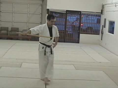 Bokken Kata 1 Image 1