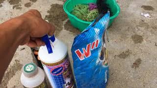 Cách Tẩy Rửa Xe Làm Mới Xe Tại Nhà