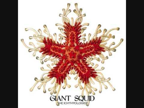 Giant Squid - Blue Linckia Linckia Laevigata