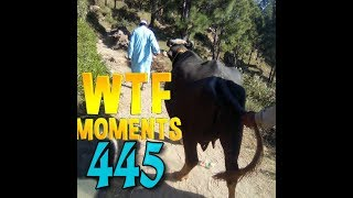 PUBG Daily WTF Moments Highlights Ep 445 #PUBGWTF