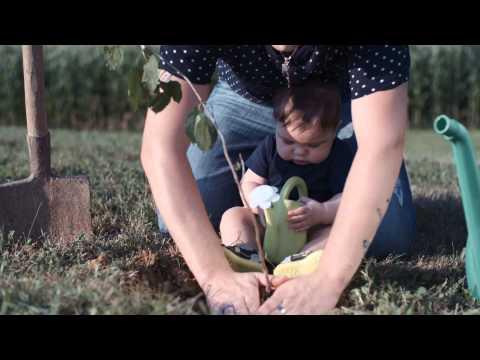 ANSAMBEL VIKEND- SIN (URADNI VIDEOSPOT; SLOVENSKI VAL?EK LETA 2015)