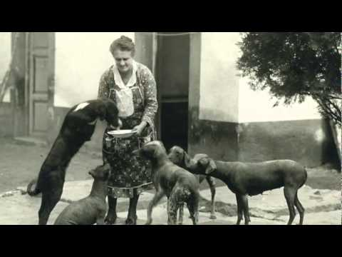 Frida Kahlo, her pictures