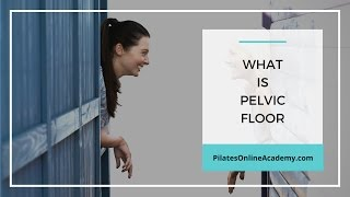What is Pelvic Floor