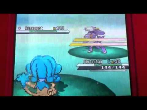 Attraper Genesect niveau 100 pokemon noir